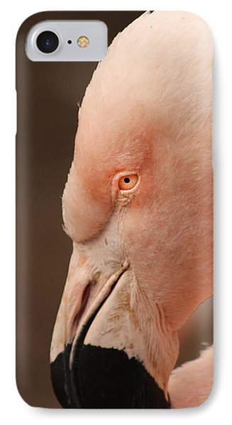 IPhone Case featuring the photograph Pink Flamingo by Bob and Jan Shriner