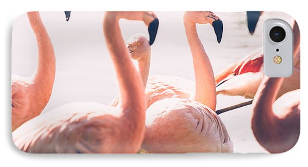 Pink Flamingo Flock IPhone Case by Pati Photography