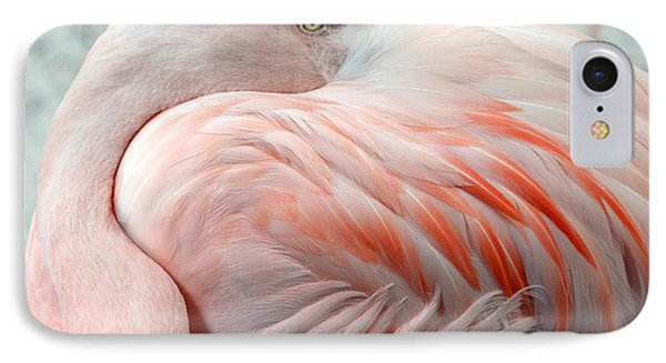 IPhone Case featuring the photograph Pink Flamingo II by Robert Meanor