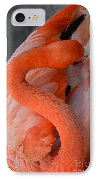 Pink Flamingo IPhone Case by Robert Meanor
