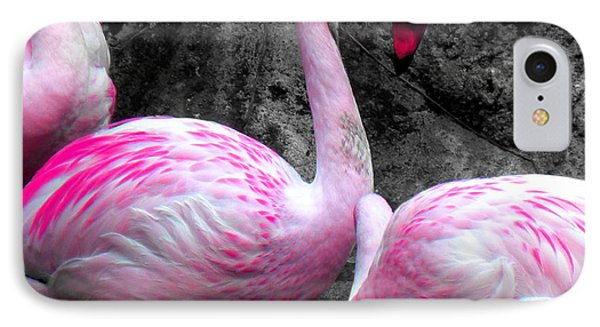IPhone Case featuring the photograph Pink Flamingos by J Anthony