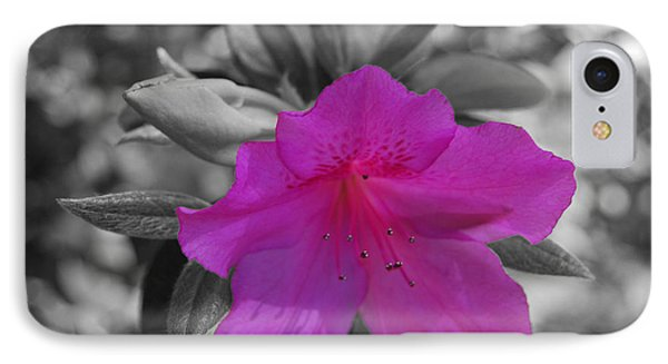 IPhone Case featuring the photograph Pink Flower 2 by Maggy Marsh