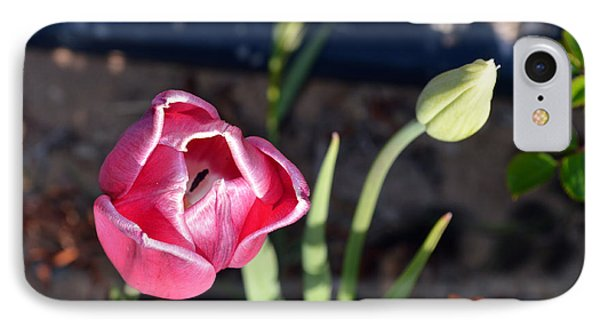 Pink Flower And Bud Phone Case by Brent Dolliver