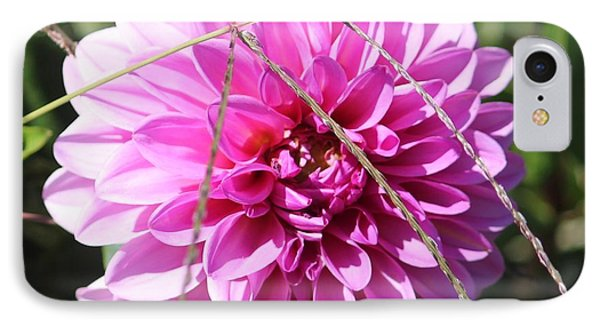 Pink Flower IPhone Case by Cynthia Snyder
