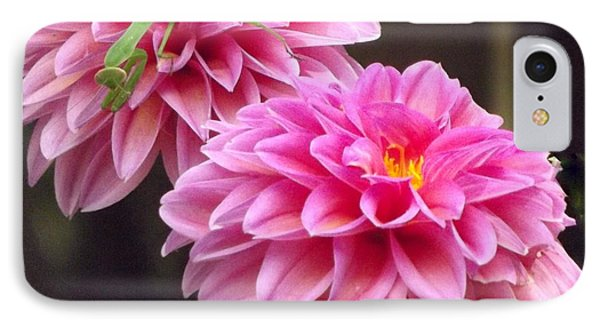 Pink Flower IPhone Case by John Wartman