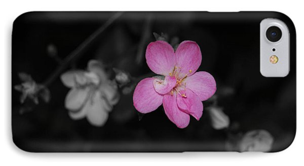 IPhone Case featuring the photograph Pink Flower  by Maggy Marsh