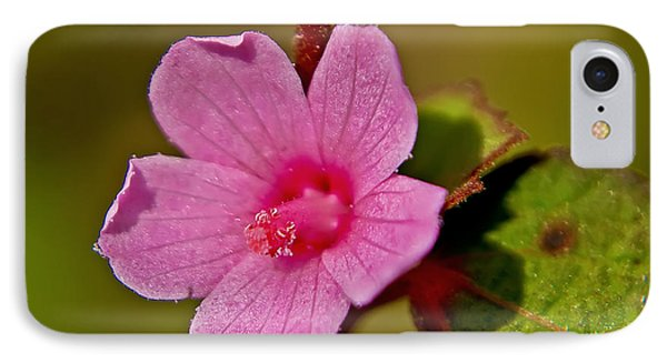 IPhone Case featuring the photograph Pink Flower by Olga Hamilton