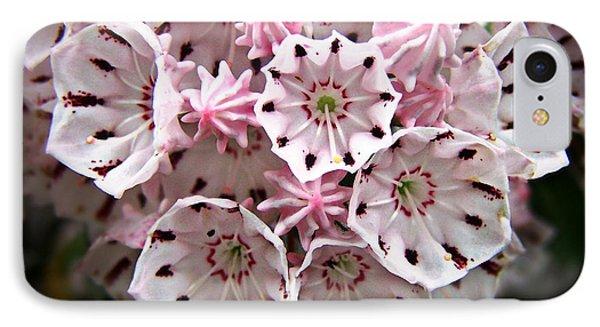 Pink Flowered Mountain Laurel IPhone Case