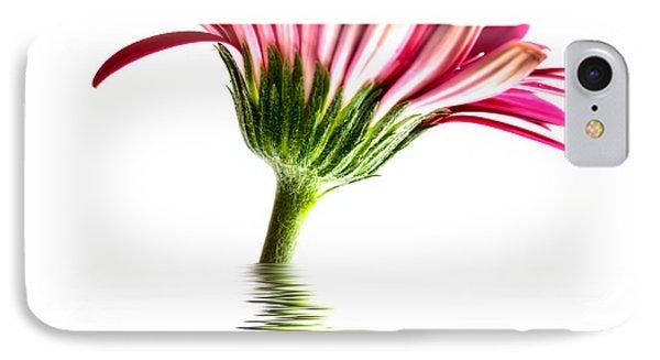 Pink Gerbera Flood 2 Phone Case by Steve Purnell