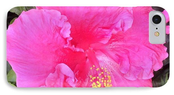 IPhone Case featuring the photograph Pink Hibiscus by Alohi Fujimoto