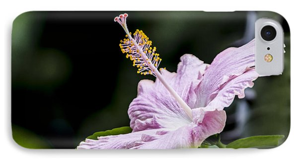 Pink Hibiscus Flower IPhone Case by Photographic Art by Russel Ray Photos
