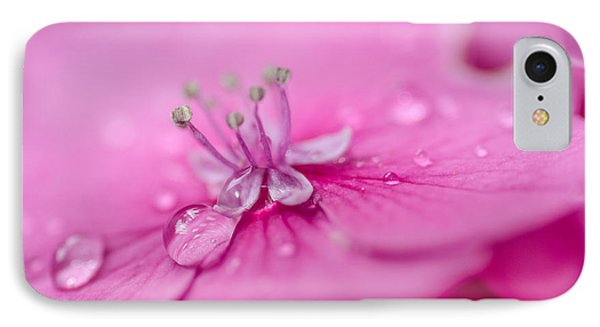 Pink Hydrangea IPhone Case by Martina Fagan