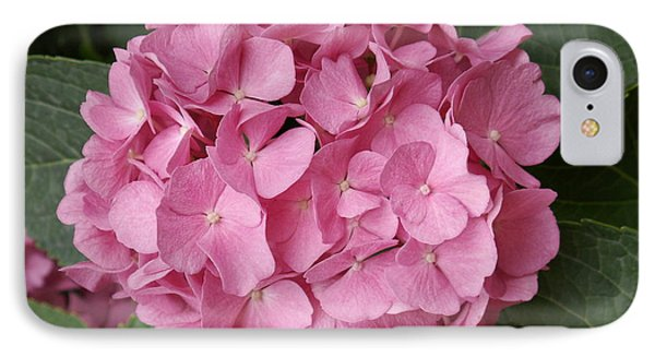 IPhone Case featuring the photograph Pink Hydrangea by Sandy Molinaro