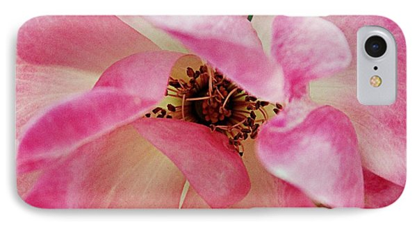 Pink Knock Out IPhone Case by Geri Glavis