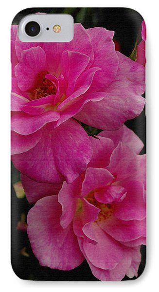 IPhone Case featuring the photograph Pink Knock Outs by James C Thomas