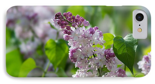 Pink Lilacs And Green Leaves - Featured 3 Phone Case by Alexander Senin
