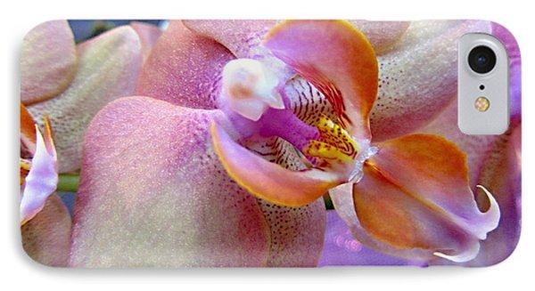 Pink Limonaid Orchids Macro Phone Case by Danielle  Parent