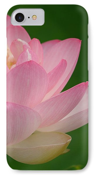 Pink Lotus IPhone Case by Jane Ford
