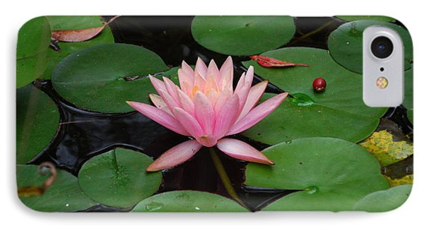 Pink Lotus Love 2 IPhone Case