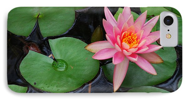Pink Lotus Love IPhone Case