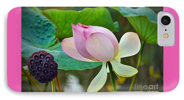 Pink Lotus IPhone Case by Savannah Gibbs