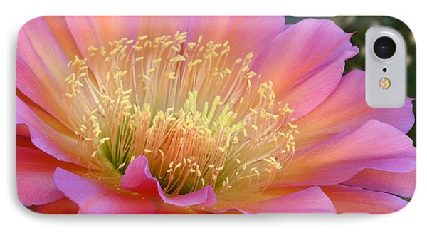 IPhone Case featuring the photograph Pink Melody by Cindy McDaniel