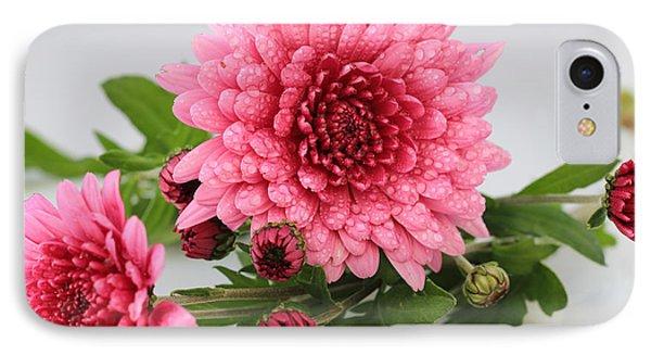 Pink Mums IPhone Case by Rachel Cohen