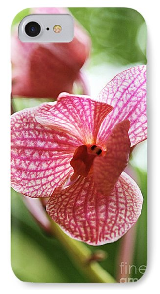 Pink Orchid I Phone Case by Pamela Gail Torres