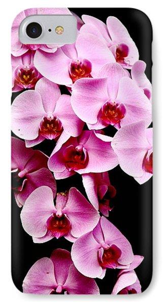 Pink Orchid IPhone Case by Menachem Ganon