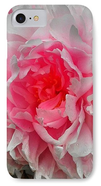 Pink Peony Rose Phone Case by Beril Sirmacek