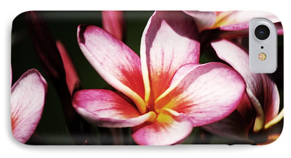 IPhone Case featuring the photograph Pink Plumeria by Angela DeFrias