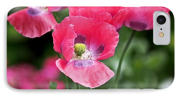 Pink Poppies IPhone Case by Rona Black