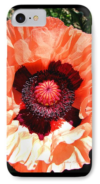 IPhone Case featuring the photograph Peach Poppy Perfection by Brooks Garten Hauschild