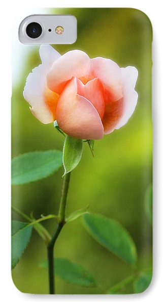 Pink Rose IPhone Case by Jim Poulos