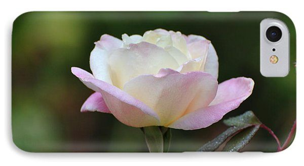 IPhone Case featuring the photograph Pink Rose by Jodi Terracina