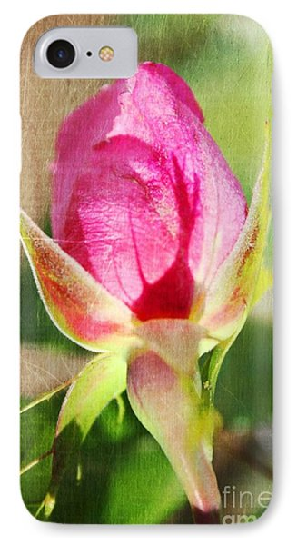 Pink Rose IPhone Case by Judy Palkimas