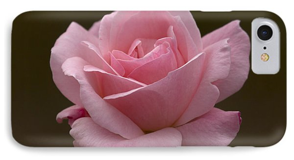 IPhone Case featuring the photograph Pink Rose by Meg Rousher