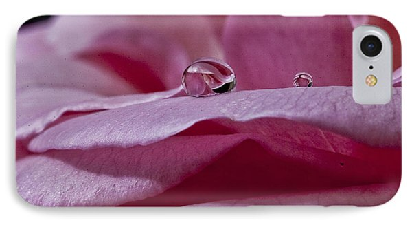 IPhone Case featuring the photograph Pink Rose by Shirley Mangini