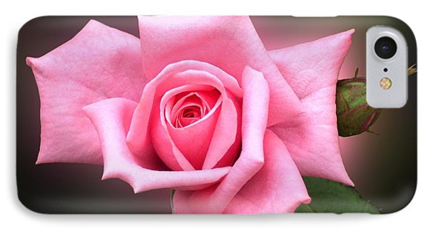 Pink Rose Phone Case by Thomas Woolworth