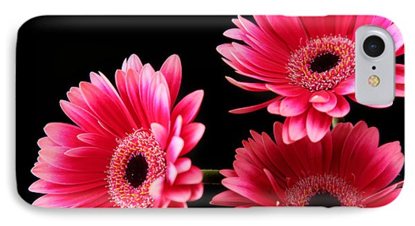 Pink Sisters IPhone Case by Eden Baed
