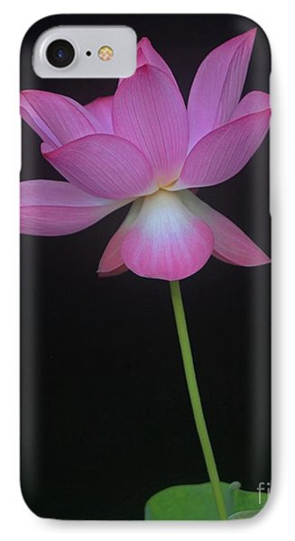 Pink Spaces Lotus IPhone Case