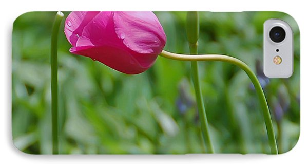 Pink Tulip IPhone Case by Aimee L Maher Photography and Art Visit ALMGallerydotcom
