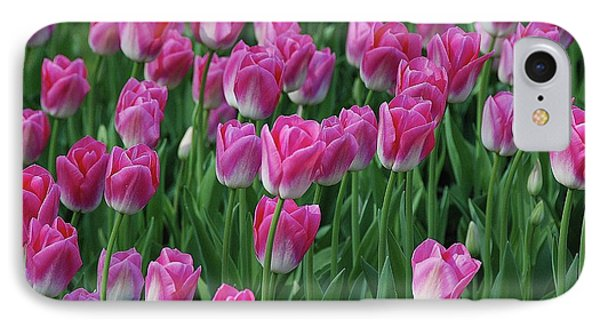 IPhone Case featuring the photograph Pink Tulips 2 by Allen Beatty