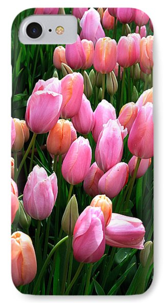 IPhone Case featuring the photograph Pink Tulips by Haleh Mahbod
