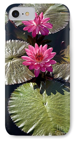 Pink Water Lily IIi Phone Case by Heiko Koehrer-Wagner