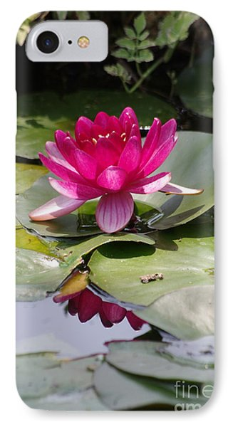 Pink Water Lily Phone Case by Tannis  Baldwin