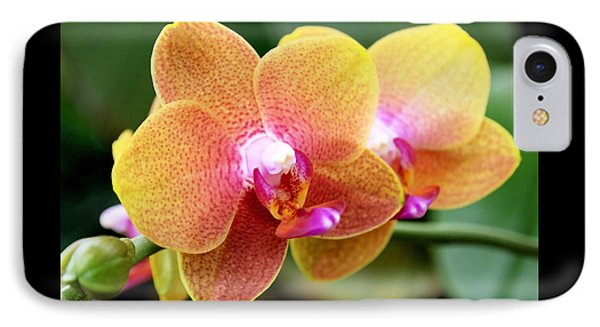 Pink Yellow Orchid Phone Case by Rona Black
