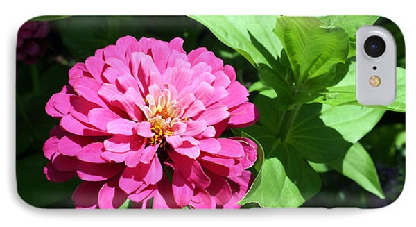 IPhone Case featuring the photograph Pink Zinnia by Ellen Tully