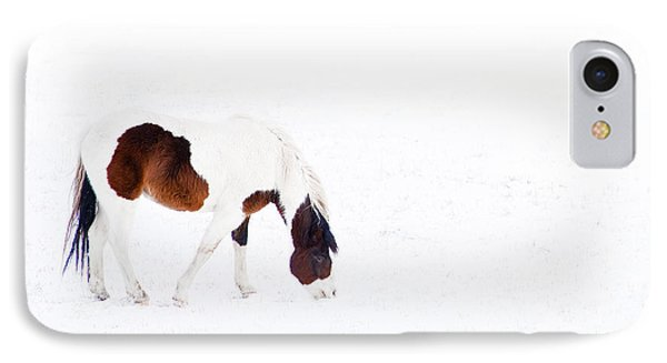 Pinto Pony IPhone Case by Theresa Tahara