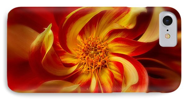 Pinwheel IPhone Case by Mary Jo Allen